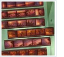 scan your negative strips to DVD